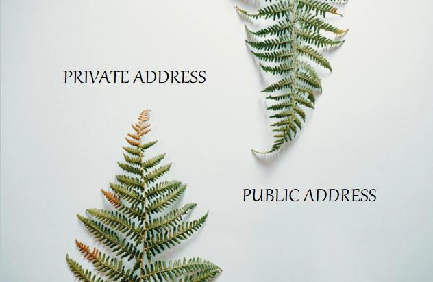 public address and private address